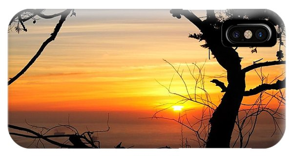 Sunset In A Tree Frame IPhone Case