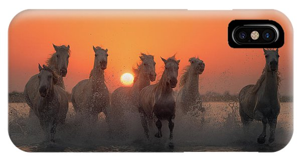 French iPhone Case - Sunset In Camargue by Rostovskiy Anton