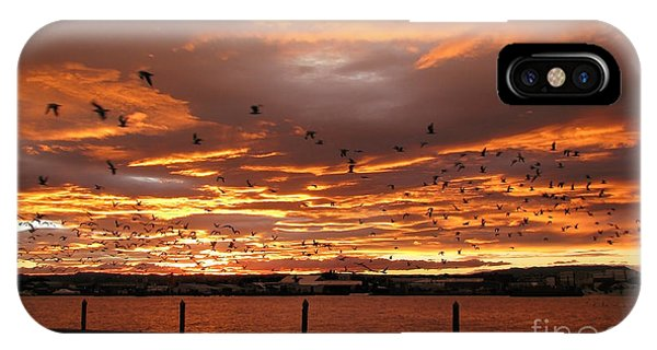 Sunset In Tauranga New Zealand IPhone Case