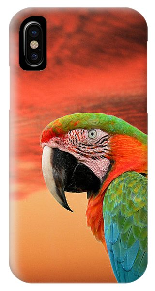 Sunset In The Tropics IPhone Case
