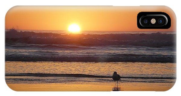 Sunset Seagull IPhone Case