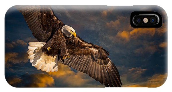 Sunset Soaring IPhone Case