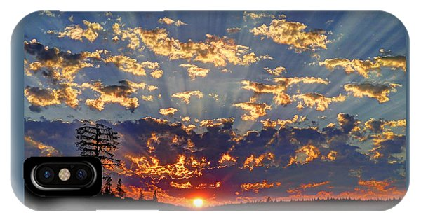 Sunset Spectacle IPhone Case