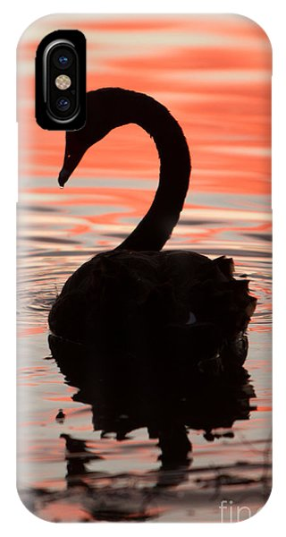 Sunset Swan IPhone Case