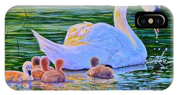 Sunset Swan Family IPhone Case