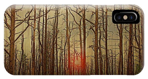 Sunset Thru The Pine Barrens IPhone Case