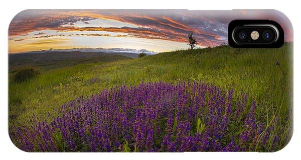 Sunset With Lavender Phone Case by Ovidiu Caragea