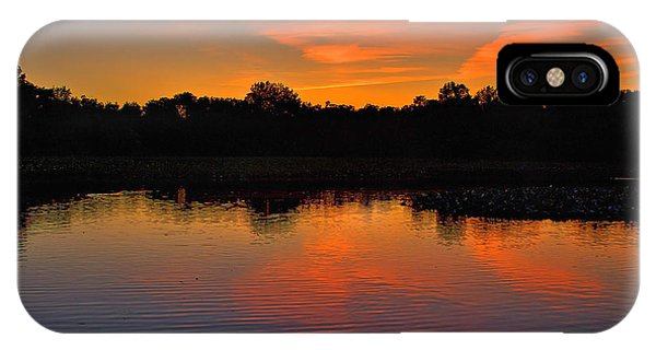 Sunset With Swan IPhone Case