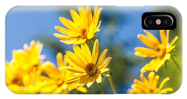 Teton iPhone Case - Sunshine by Chad Dutson