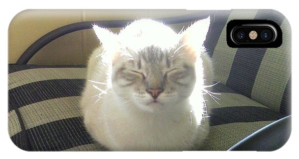 Sunshine Kitty IPhone Case
