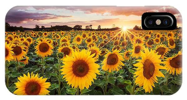 Sunset iPhone Case - Sunshine by Michael Breitung
