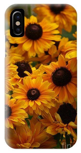 Sunshine On A Stem IPhone Case