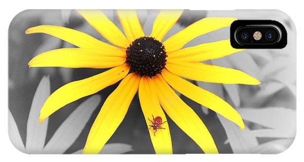 Sunshine Susie IPhone Case
