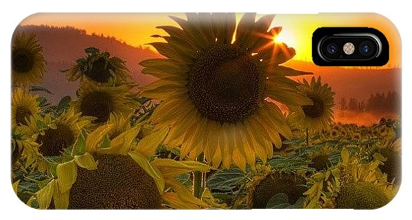 Florals iPhone Case - Sunst And Sunfloers  #sunset by Mark Kiver