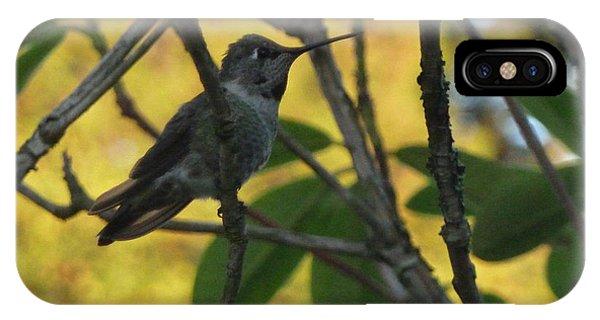 Super Hummingbird To The Rescue IPhone Case