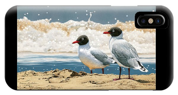 Surf 'n' Turf - Franklin's Gulls IPhone Case