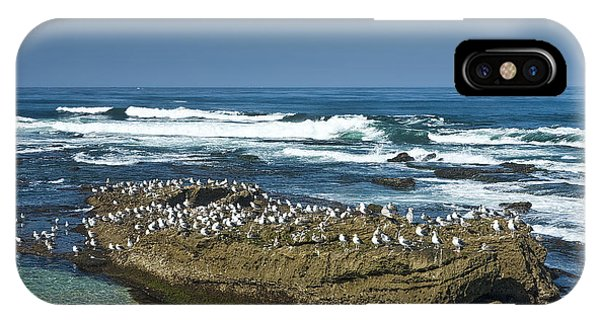 Surf Waves At La Jolla California With Gulls Perched On A Large Rock No. 0194 IPhone Case
