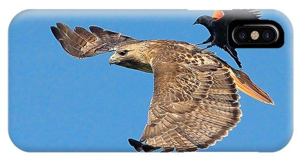 Surfer Bird  IPhone Case