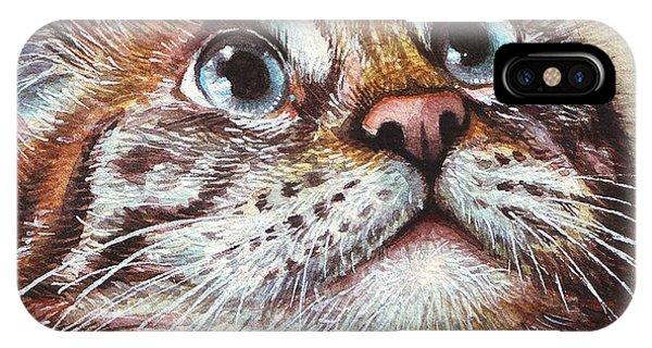 Pets iPhone Case - Surprised Kitty by Olga Shvartsur