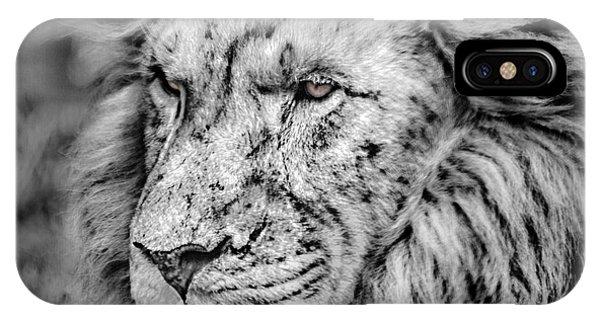 Surreal Lion IPhone Case