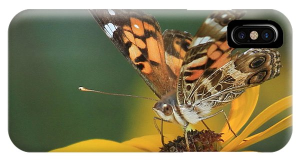 Susan Painted Lady IPhone Case
