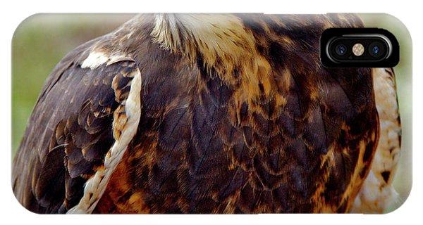 Swainson's Hawk IPhone Case