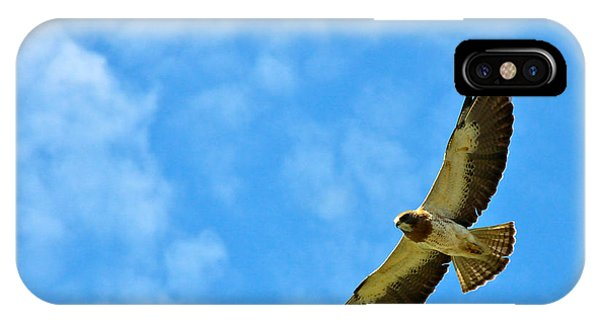 Swainson's Hawk Snake River Birds Of Prey Natural Conservation Area IPhone Case
