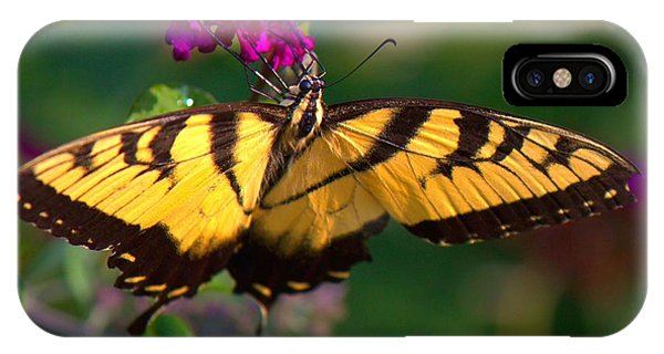 Swallowtail 1 IPhone Case