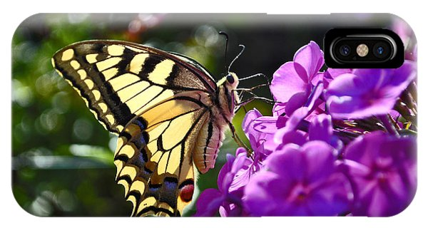 Swallowtail On A Flower IPhone Case
