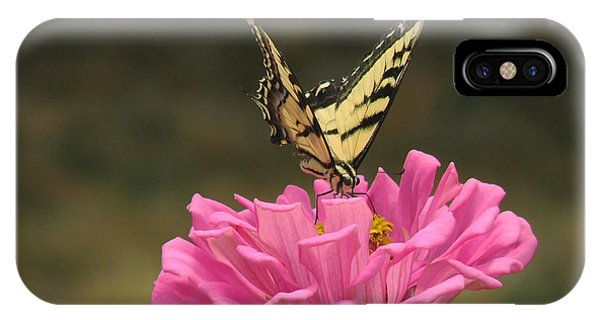 Swallowtail On A Zinnia IPhone Case