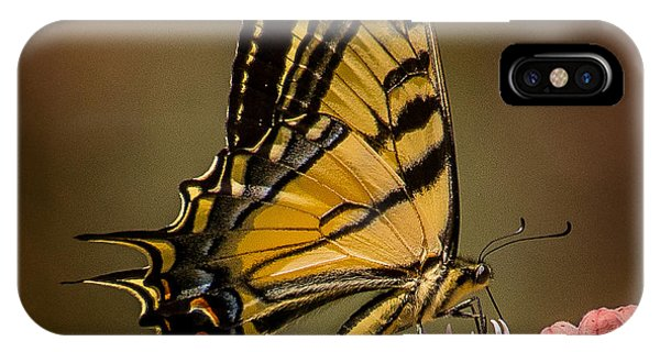 Swallowtail On Milkweed IPhone Case