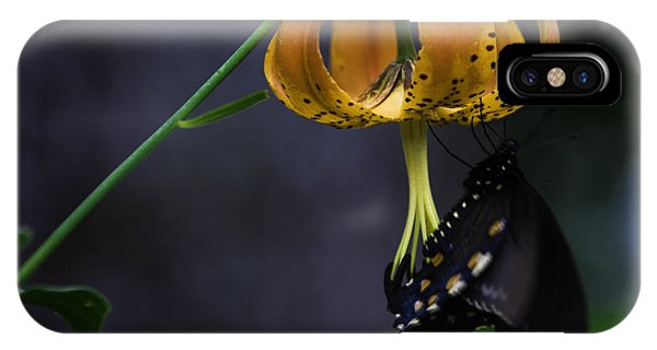 Swallowtail On Turks Cap IPhone Case