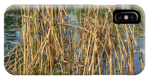 Swamp Grass Phone Case by Deborah Smolinske