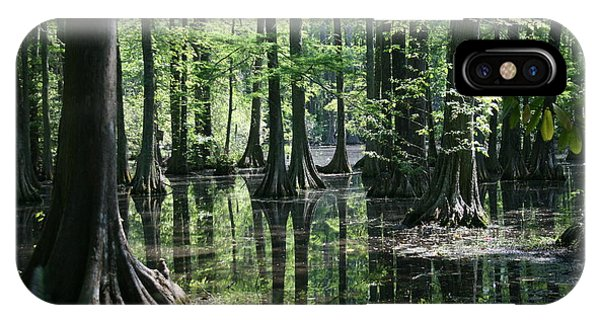 Swamp Land IPhone Case