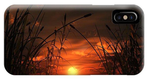 Swamp Sunset  IPhone Case