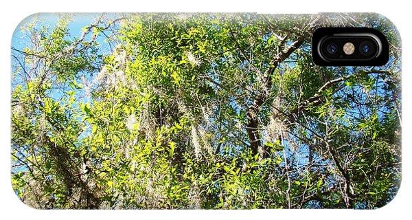 Swamp Tree Hugger Phone Case by Van Ness