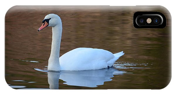 Swan 6 IPhone Case