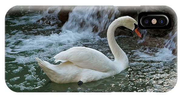 Swan A Swimming IPhone Case