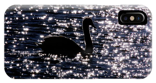 Swan Bay IPhone Case