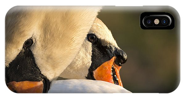 Swan Heads IPhone Case