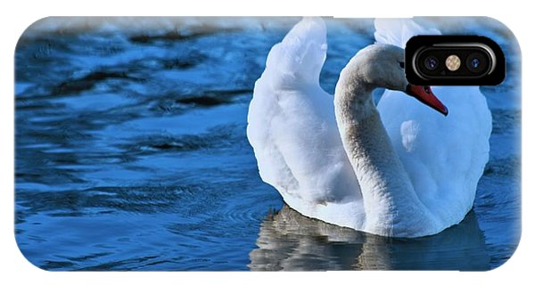 Swan In Blue Waters IPhone Case