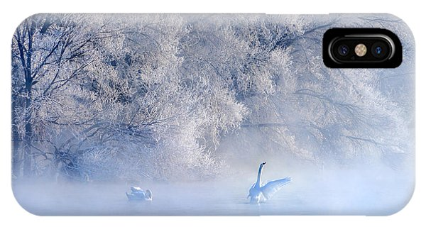 Swan iPhone Case - Swan Lake by Hua Zhu