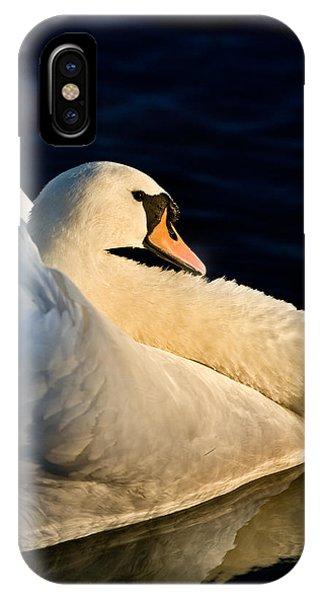 Swan On Lake IPhone Case