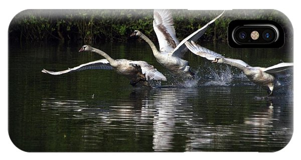 IPhone Case featuring the photograph Swan Take-off by Jeremy Hayden
