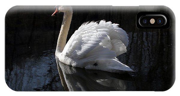 Swan With Reflection  IPhone Case
