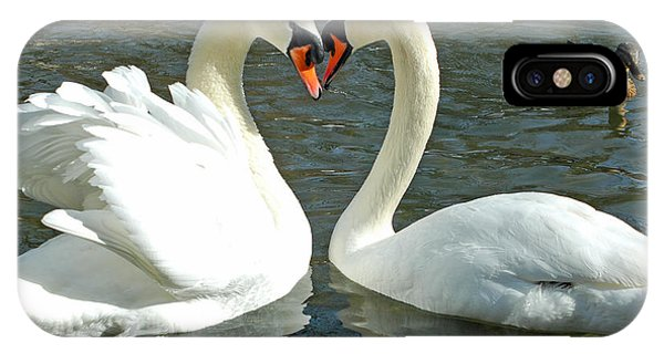 Swans At City Park IPhone Case