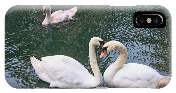 Swans In Love Phone Case by Lidia Anderson