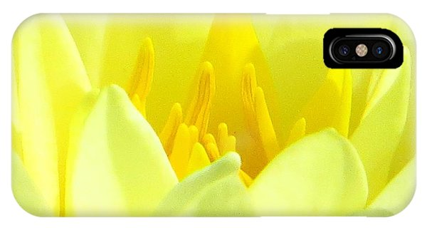 Swarna Kamal IPhone Case