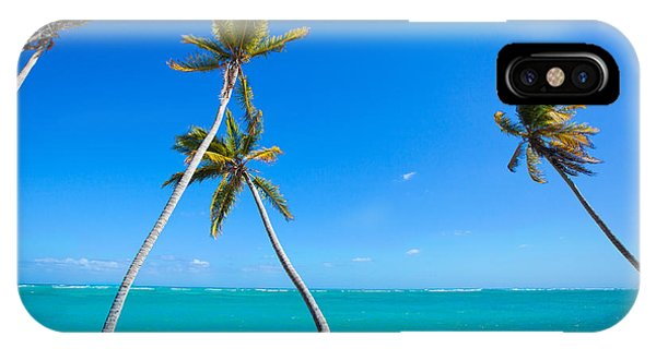 Swaying Palm Trees IPhone Case