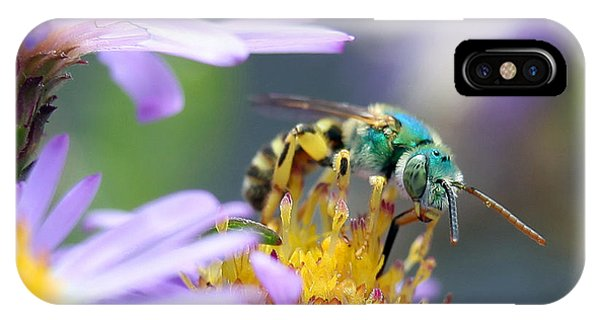 Sweet Bee IPhone Case
